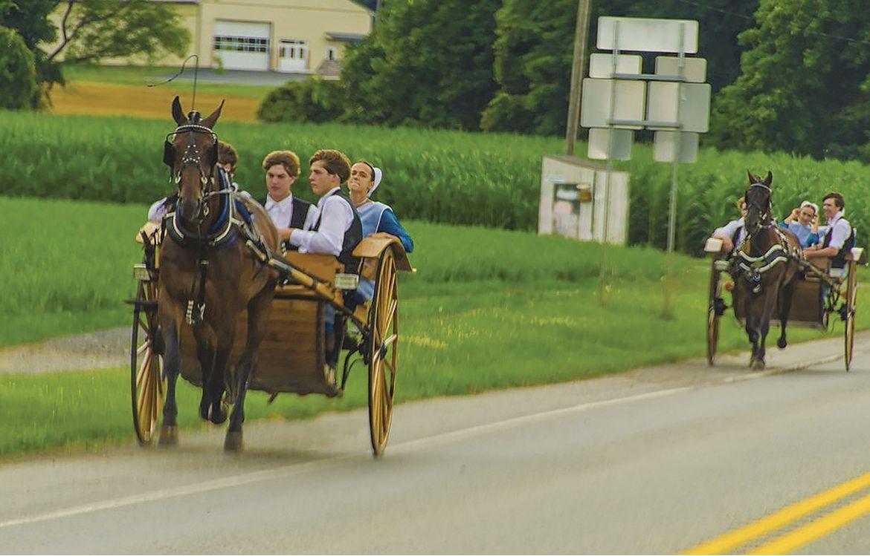 Les Amish délibèrent avant l'introduction d'une nouvelle technologie dans leur société.