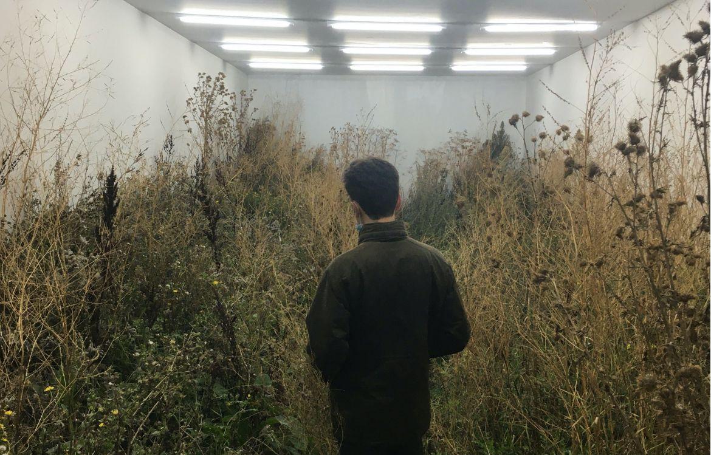 Brun dans le White Cube, de Fabian Knecht, installation éphémère à Vives les Groues, nuit blanche du 3 octobre 2020, à Courbevoie.